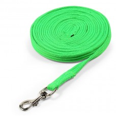 Shires Wessex Cushion Web Lunge Line - Green