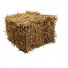 Half Bale of Straw