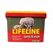 Supalyx Lifeline Lamb & Ewe