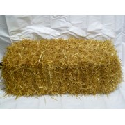 Straw Bale ***OUT OF STOCK***