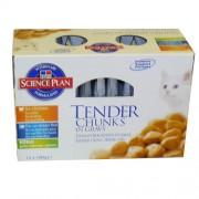 Hills Tender Chunks Kitten Variety - 12 x 100g