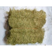 Hay Half Bale ***ONLY JUNE 2020 HAY AVAILABLE*** (***2019 HAY OUT OF STOCK***)