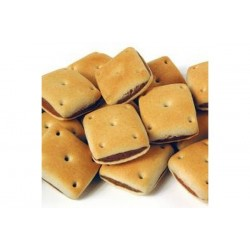 Pointer Liver Squares (available in 2 sizes)