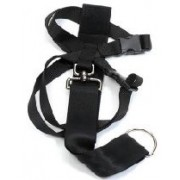 Ancol Car Harness (Available in 3 sizes)