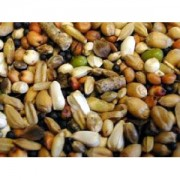 Pigeon Condition Seed – 12.5kg