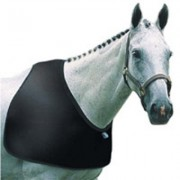 Anti Rub Bib  (Available in 2 sizes)