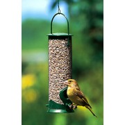 Discovery Plastic Seed Feeder Green