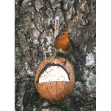 Cj Peanut Whole Filled Coconut