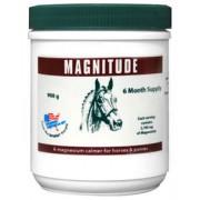 Equine America Magnitude – 908g