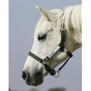 Field Safe Headcollar (available in 3 sizes)