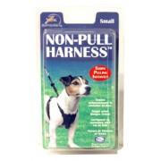Coa Non-Pull Harness