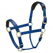Legacy Premium Headcollar - Royal Blue