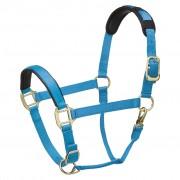 Legacy Premium Headcollar - Turquoise