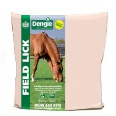 Dengie Field Lick