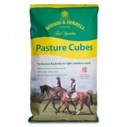 Dodson & Horrell Pasture Cubes