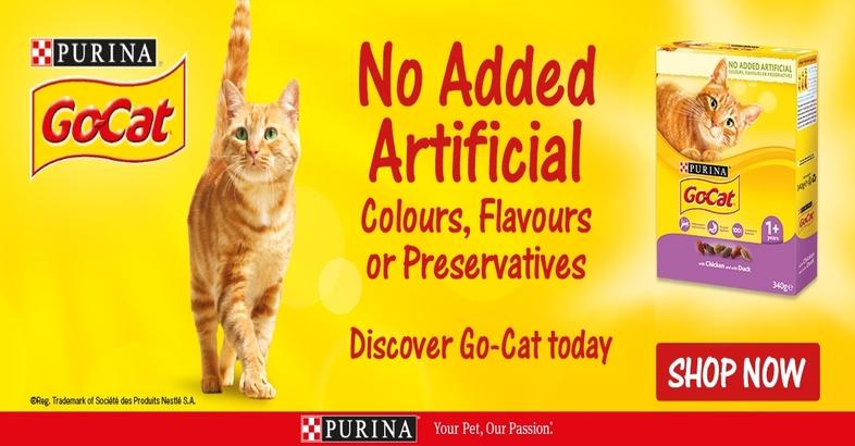 Go Cat No Added Artificial
