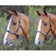 Blenheim Adjustable Headcollar (Available in 2 sizes and 2 colours)