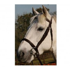 JHL Raised Cavesson Bridle - Black  (available in 3 sizes)