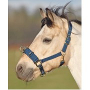 Shires Economy Lunge Cavesson Black (Available in 2 sizes)