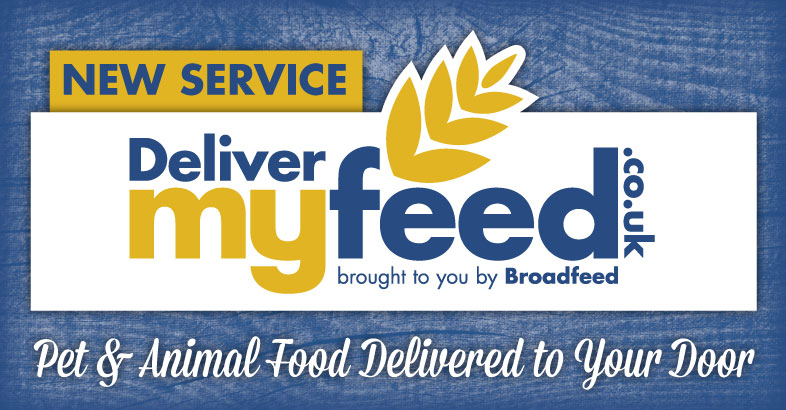 Welcome to DeliverMyFeed