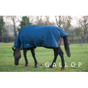 Gallop Trojan Combo Lightweight Turnout - Navy/Green