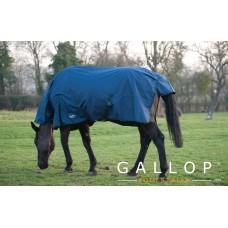 Gallop Trojan Combo Lightweight Turnout - Navy/Green