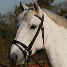 JHL Flash Bridle - Black  (available in 3 sizes)