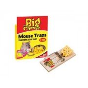 Baited Mouse Trap