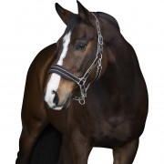 Rambo Newmarket Headcollar - Chocolate (available in 3 sizes)