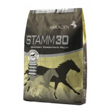 Saracen Stamm 30 Balancer - 20kg