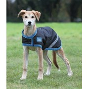 Shires Waterproof Dog Coat - Black/Turquoise (xx- small - small)