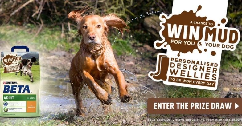 Win with Beta Dog Food!