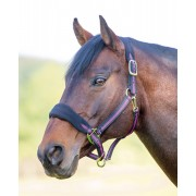 Shires Topaz Fleece Headcollar - Black/Raspberry