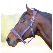 Shires Topaz Fleece Headcollar - purple/blue