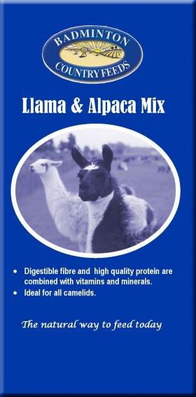 Badminton Llama Amp Alpaca Mix Llama Amp Alpaca Feed In Kent
